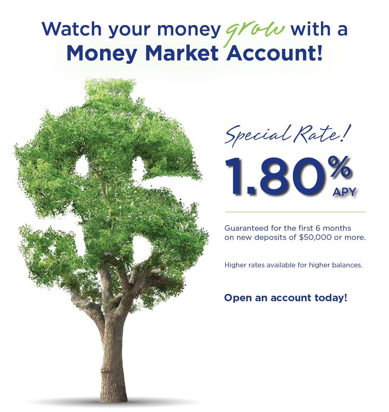 Old Point National Bank Money Market Special